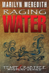Raging Water cover